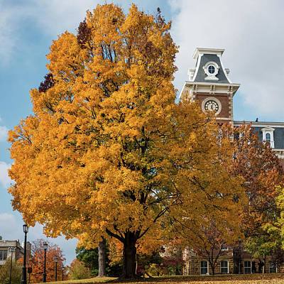 University Of Arkansas Wall Art - Photograph - Autumn And Old Main - University Of Arkansas by Gregory Ballos