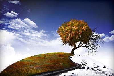 Fantasy Photograph - Autumn And Winter by Mihaela Pater