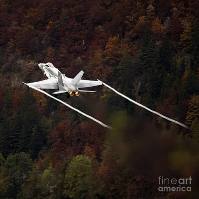 F-18 Photograph - Autumn by Angel  Tarantella