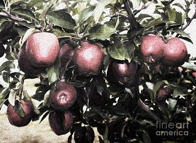 Photograph - Autumn Apples - Luther Fine Art by Luther Fine Art