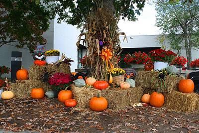 Photograph - Autumn Arrangement 1 by Kathryn Meyer