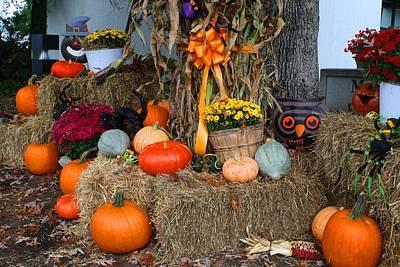 Photograph - Autumn Arrangement 2 by Kathryn Meyer