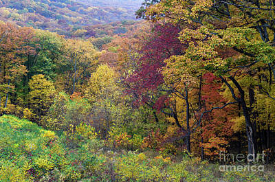 Art Print featuring the photograph Autumn Arrives In Brown County - D010020 by Daniel Dempster