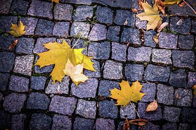 Photograph - Autumn Art by Jenny Rainbow