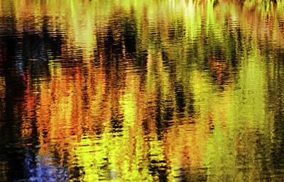 Photograph - Autumn Art by Vishwanath Bhat