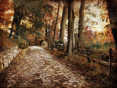Autumn Ascending  Art Print