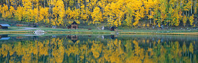 Durango Photograph - Autumn Aspens Along Route 550, North by Panoramic Images