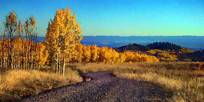 Photograph - Autumn - Aspens by Nikolyn McDonald