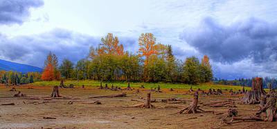 Dry Lake Photograph - Autumn At Alder Lake by David Patterson