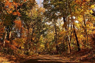 Photograph - Autumn At Audubon by Sandy Keeton