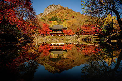 Photograph - Autumn At Baekyangsa by Roy Cruz
