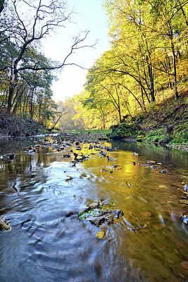 Photograph - Autumn At Brush Creek 2 by Bonfire Photography