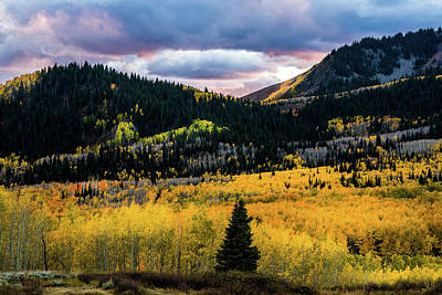 With Red Photograph - Autumn At Guardsman Pass by TL Mair