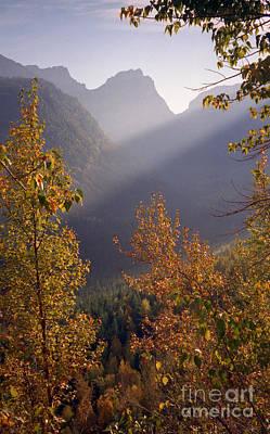 Autumn At Logan Pass Art Print