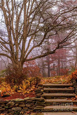 Autumn Photograph - Autumn At My Door by Claudia M Photography