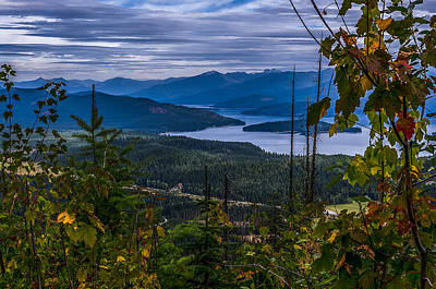 Autumn At Priest Lake Art Print