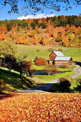 Photograph - Autumn At Sleepy Hollow by Brian Jannsen