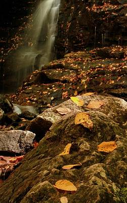Photograph - Autumn At Soco Falls by Dan Sproul