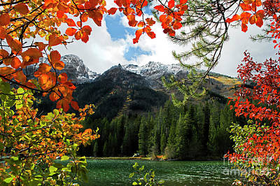 Fall Photograph - Autumn At String Lake by Wildlife Fine Art