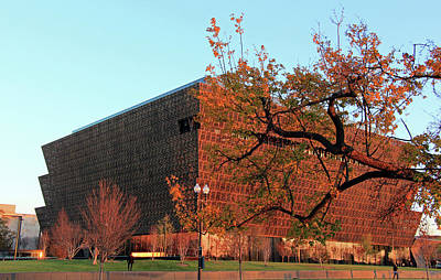Autumn At The African American History And Culture Museum Art Print