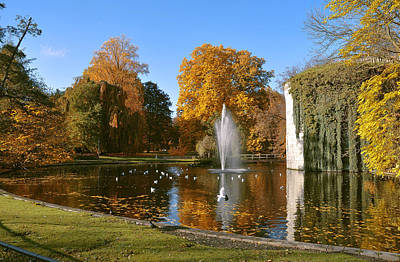 Photograph - Autumn At The City Park Pond Maastricht by Nop Briex