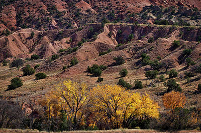 Photograph - Autumn At The Ghost Ranch #2 by Stuart Litoff