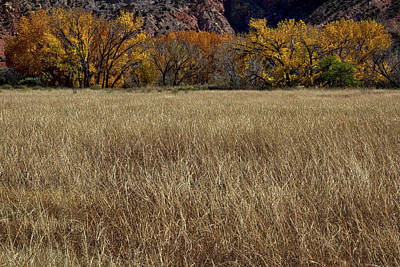 Photograph - Autumn At The Ghost Ranch by Stuart Litoff