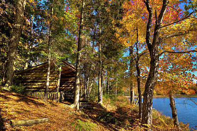Photograph - Autumn At The Lean-to by David Patterson