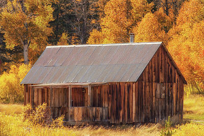 Photograph - Autumn At The Old Cabin by Marc Crumpler
