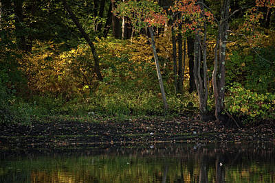 Photograph - Autumn At Wrights Pond by Karol Livote