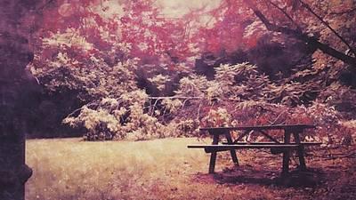 #autumn #autumncolors #trees #park Original