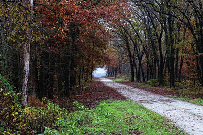 Photograph - Autumn Backroad by Scott Kingery