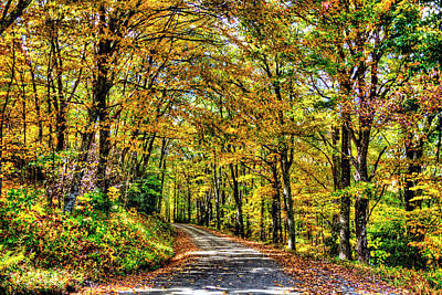Photograph - Autumn Backroads by Dale R Carlson