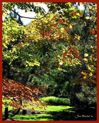 Art Print featuring the photograph Autumn Backyard by Joan  Minchak