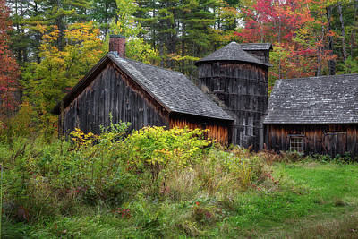 Photograph - Autumn Barnwood by Bill Wakeley