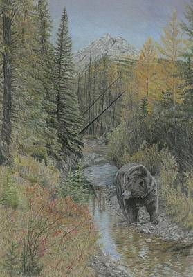 Pine Trees Drawing - Autumn Bear Romp by Laura Klassen