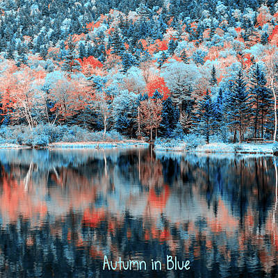 Autumn Leaf On Water Digital Art - Autumn Beauty In Blue by Black Brook Photography
