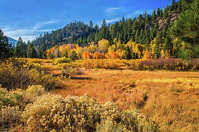 Photograph - Autumn Beauty In Hope Valley by Lynn Bauer