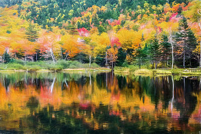 Autumn Leaf On Water Digital Art - Autumn Beauty Painted by Black Brook Photography