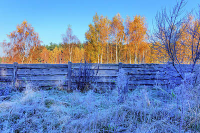 Photograph - Autumn Behind by Dmytro Korol