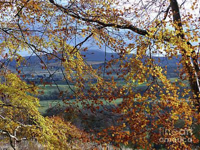 Photograph - Autumn - Ben Rinnes by Phil Banks