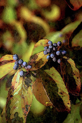 Autumn Berries 6047 Dp_2 Art Print