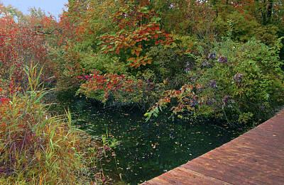 Photograph - Autumn Beside Emerald Waters by Cedric Hampton