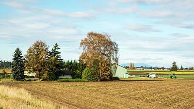 Photograph - Autumn Birch And Fallow Fields by Tom Cochran