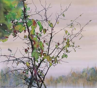 Autumn Birch By Sand Creek Original by Carolyn Doe