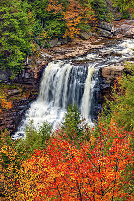 Blackwater Canyon Photograph - Autumn Blackwater Falls  by Steve Harrington