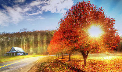 Photograph - Autumn Blaze by Debra and Dave Vanderlaan