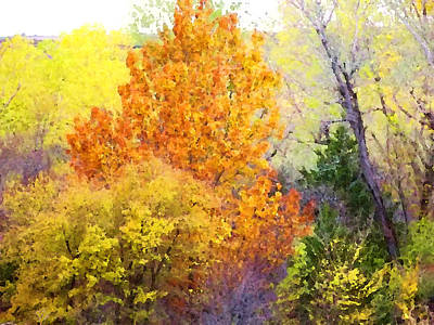 Digital Art - Autumn Blaze  by Shelli Fitzpatrick