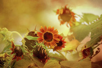 Photograph - Autumn Blessings by Theresa Campbell