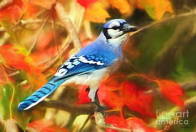 Autumn Blue Jay Art Print by Tina LeCour